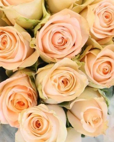Bouquet de roses pêches Tiffany