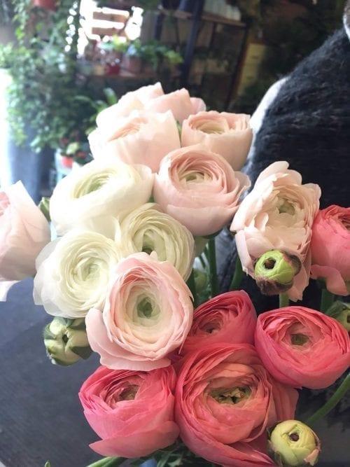 Bouquet de renoncules de l'Ontario et eucalyptus